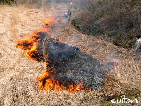 燃えております、まだ消しにはかかってない!
