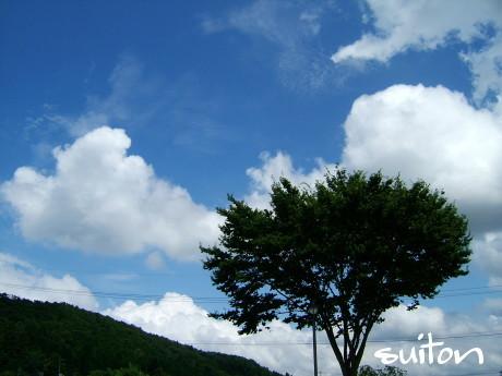 久しぶりに夏空がぁ?!